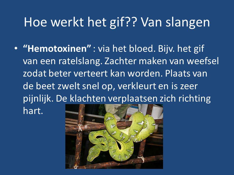 Hoe werkt het gif Van slangen