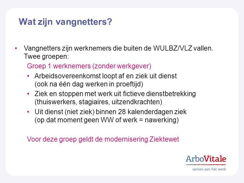 Wat zijn vangnetters Vangnetters zijn werknemers die buiten de WULBZ/VLZ vallen. Twee groepen: Groep 1 werknemers (zonder werkgever)