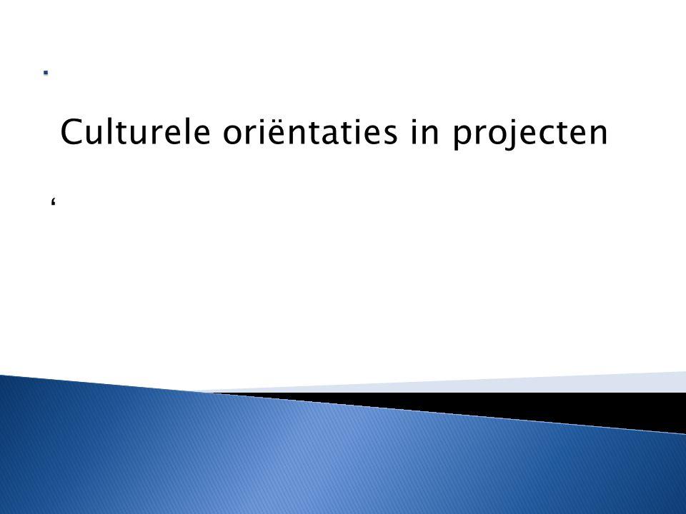 Culturele oriëntaties in projecten