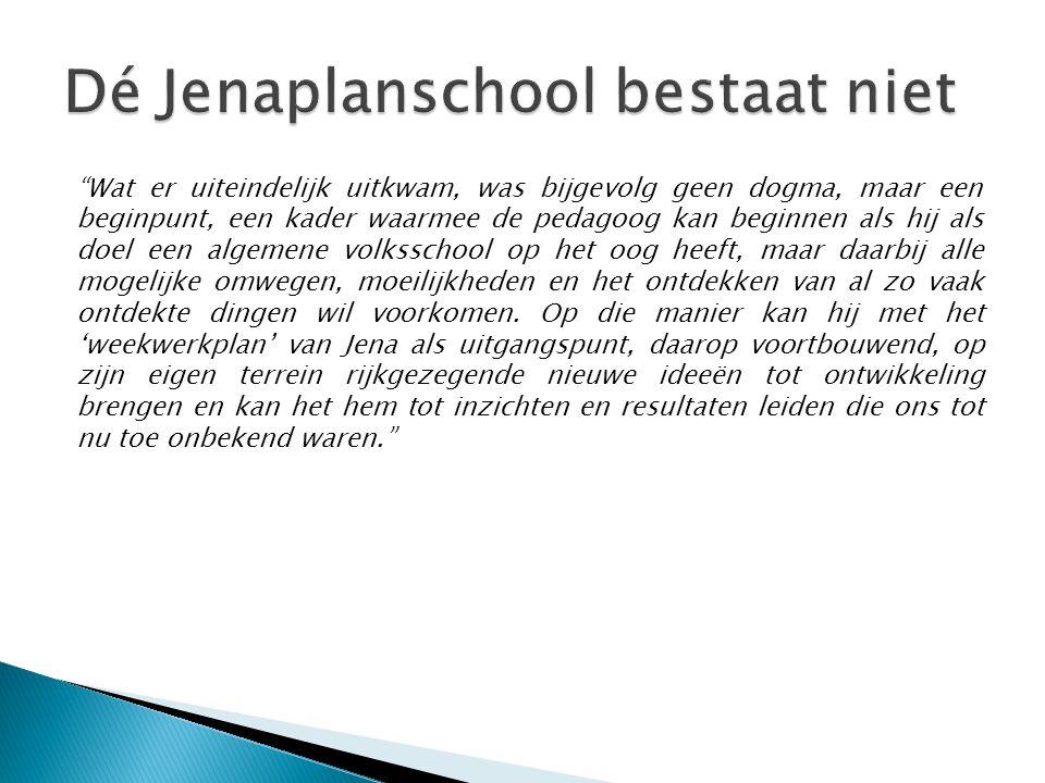 Dé Jenaplanschool bestaat niet