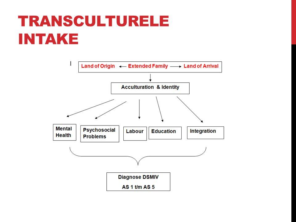 Transculturele Intake
