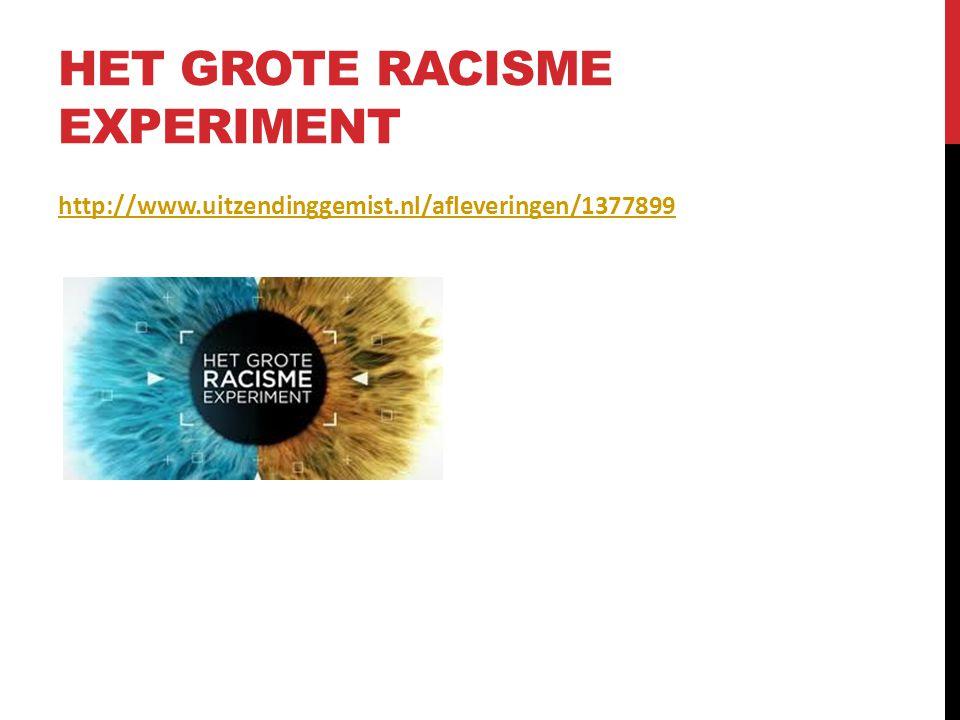 Het grote racisme experiment