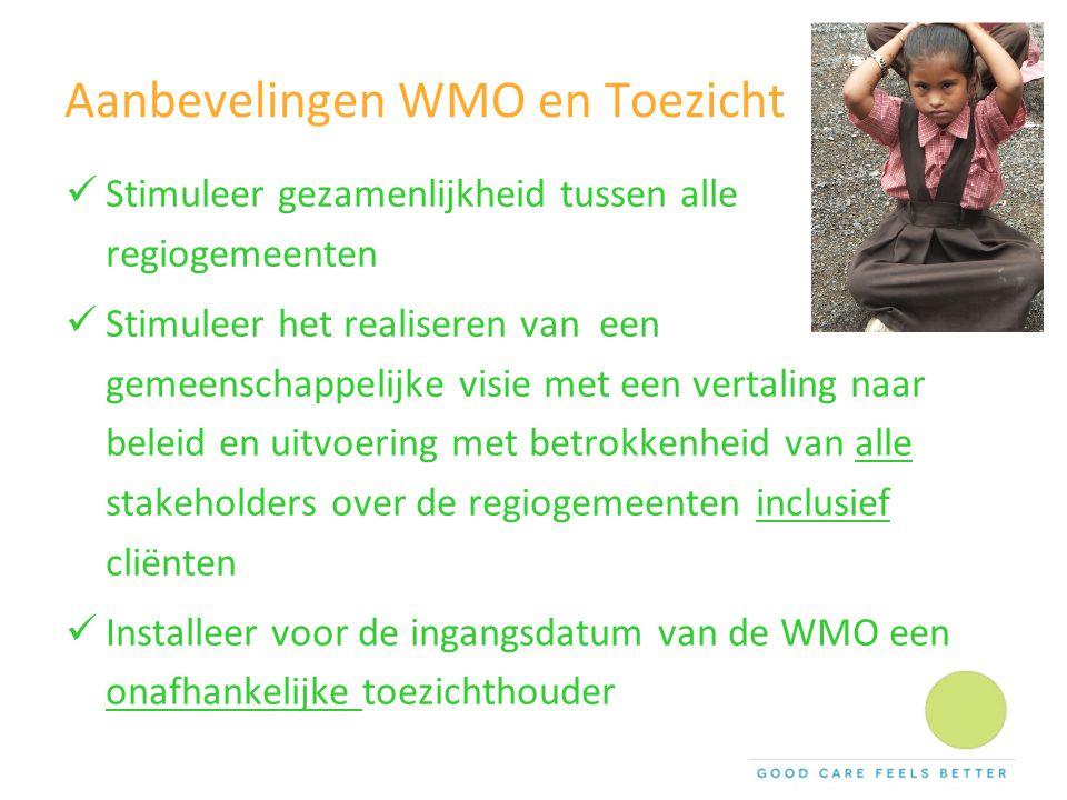 Aanbevelingen WMO en Toezicht