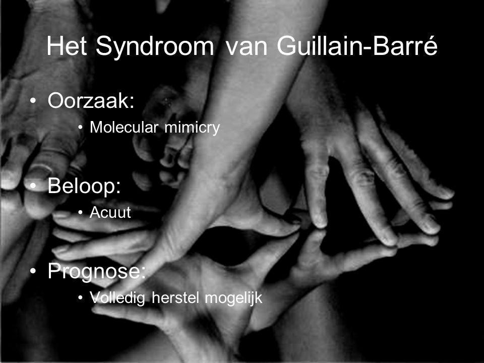 Het Syndroom van Guillain-Barré