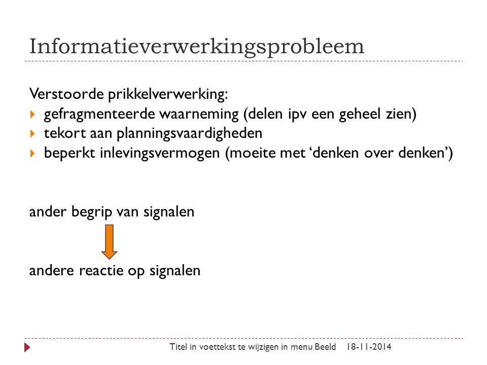 Informatieverwerkingsprobleem