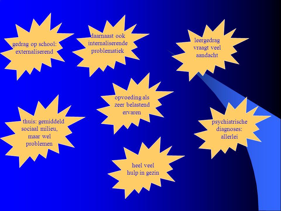 gedrag op school: externaliserend. daarnaast ook. internaliserende. problematiek. leergedrag. vraagt veel.