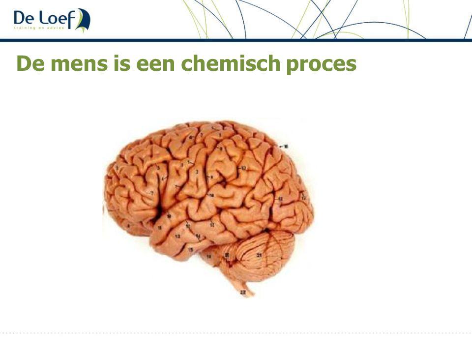 De mens is een chemisch proces