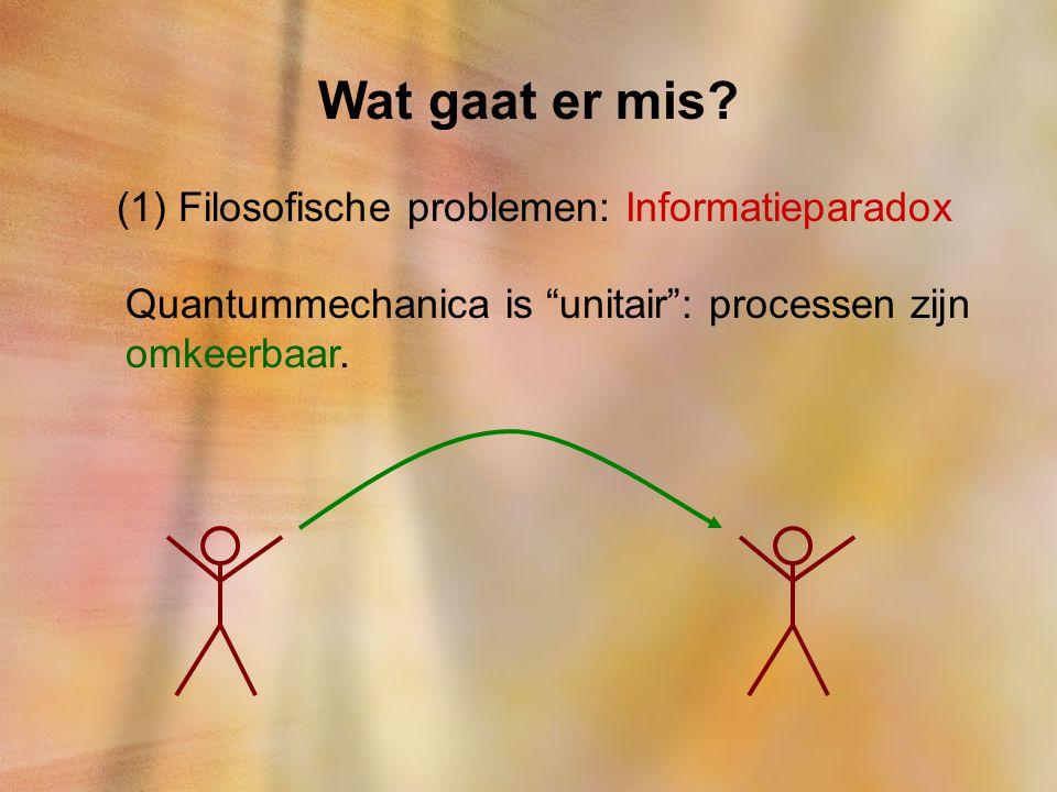 Wat gaat er mis Filosofische problemen: Informatieparadox