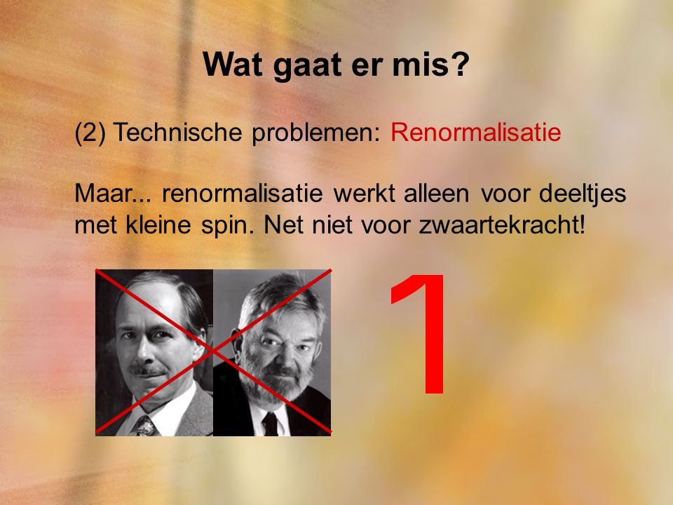 Wat gaat er mis (2) Technische problemen: Renormalisatie