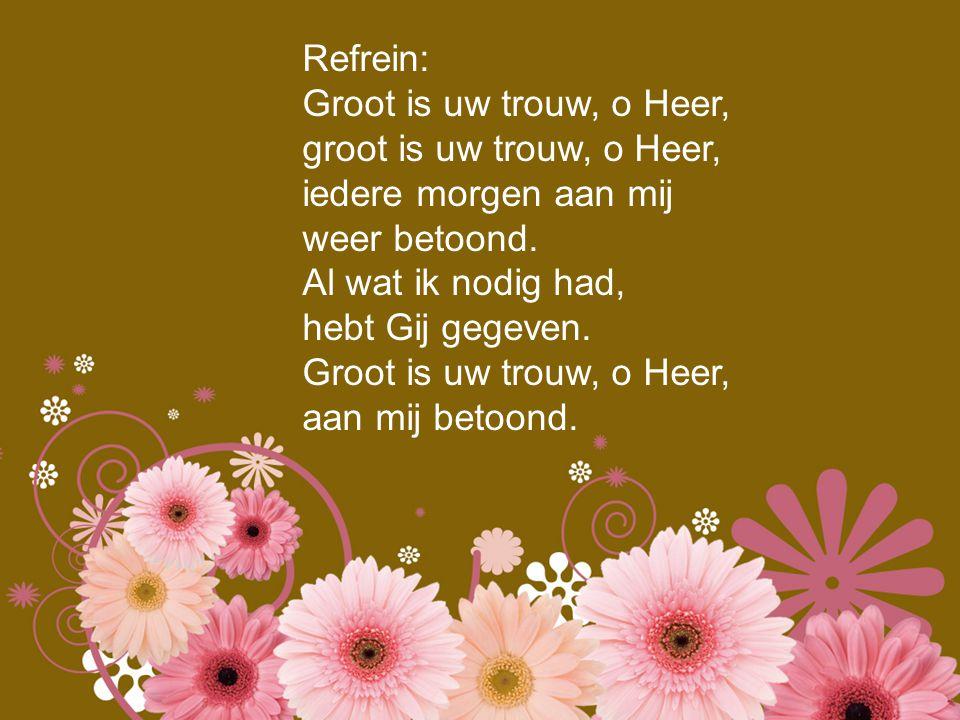 Refrein: Groot is uw trouw, o Heer, groot is uw trouw, o Heer, iedere morgen aan mij. weer betoond.