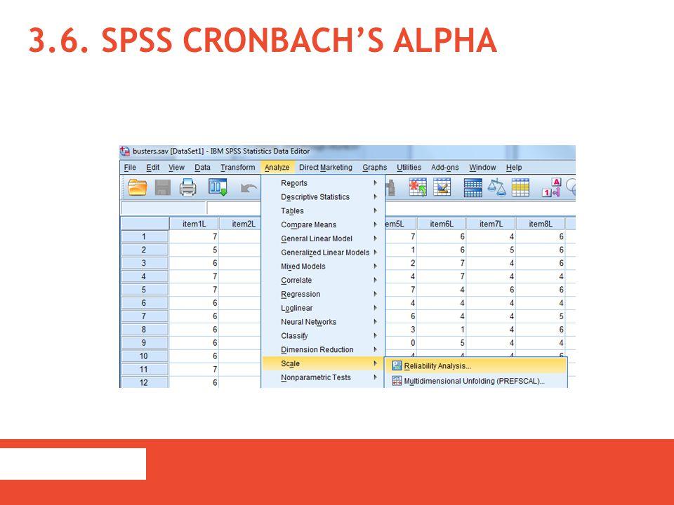 3.6. SPSS Cronbach's Alpha