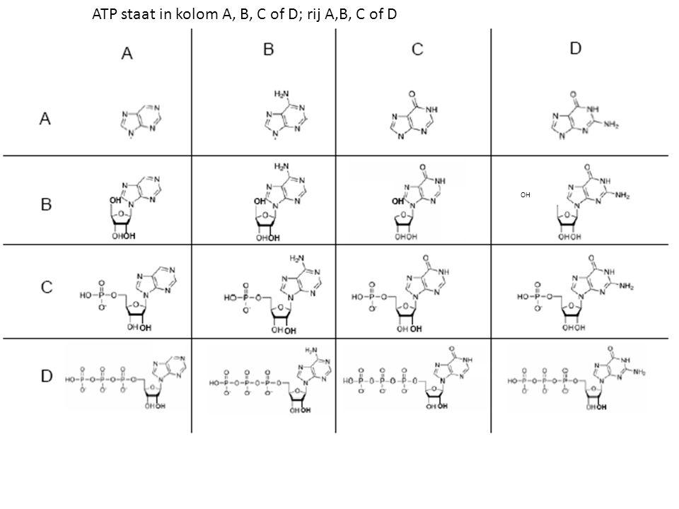 ATP staat in kolom A, B, C of D; rij A,B, C of D
