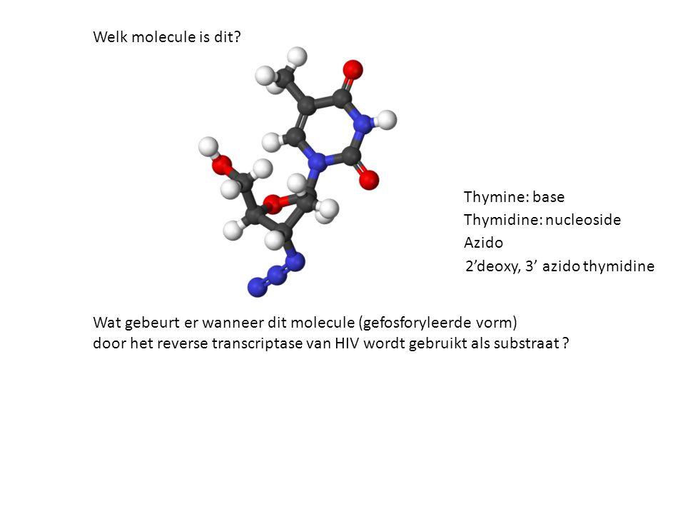 Welk molecule is dit Thymine: base. Thymidine: nucleoside. Azido. 2'deoxy, 3' azido thymidine.