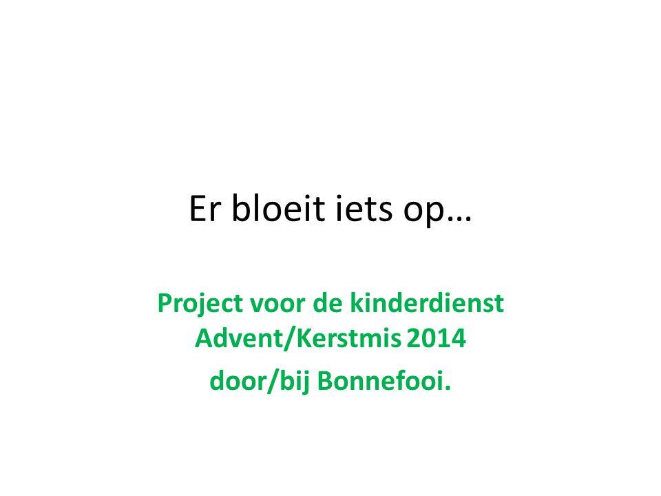 Project voor de kinderdienst Advent/Kerstmis 2014 door/bij Bonnefooi.