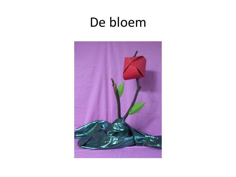 De bloem