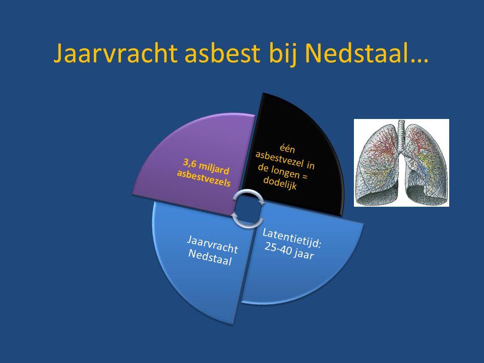 Jaarvracht asbest bij Nedstaal…
