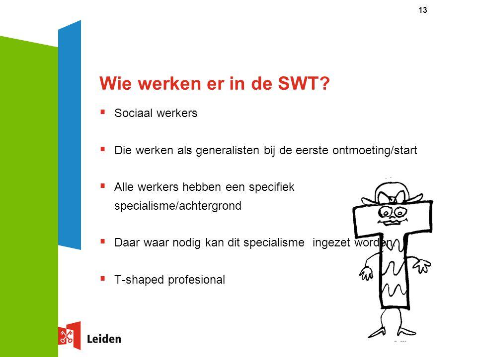 Wie werken er in de SWT Sociaal werkers