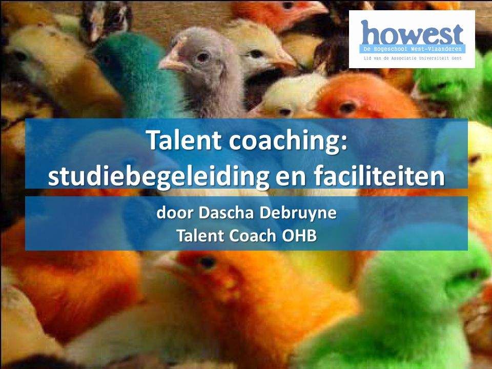 Talent coaching: studiebegeleiding en faciliteiten