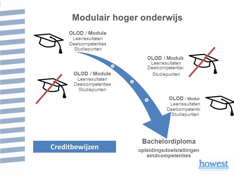 Modulair hoger onderwijs