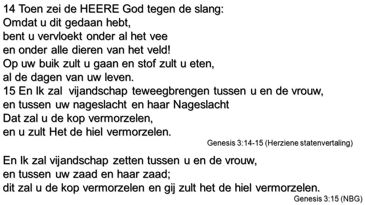 14 Toen zei de HEERE God tegen de slang: