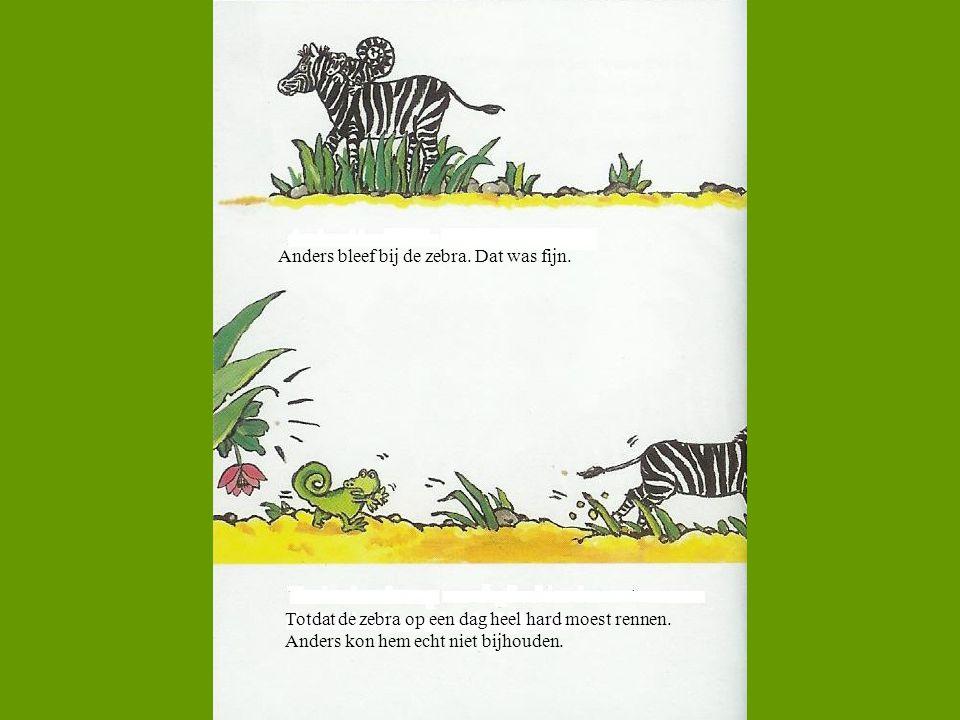 Anders bleef bij de zebra. Dat was fijn.