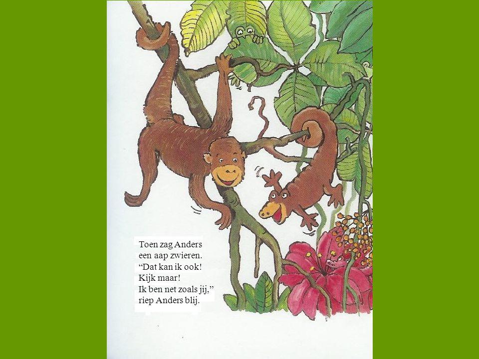 Toen zag Anders een aap zwieren. Dat kan ik ook.
