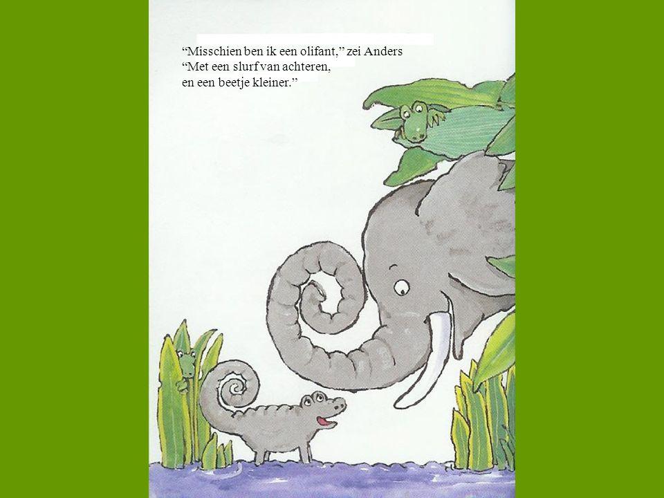 Misschien ben ik een olifant, zei Anders