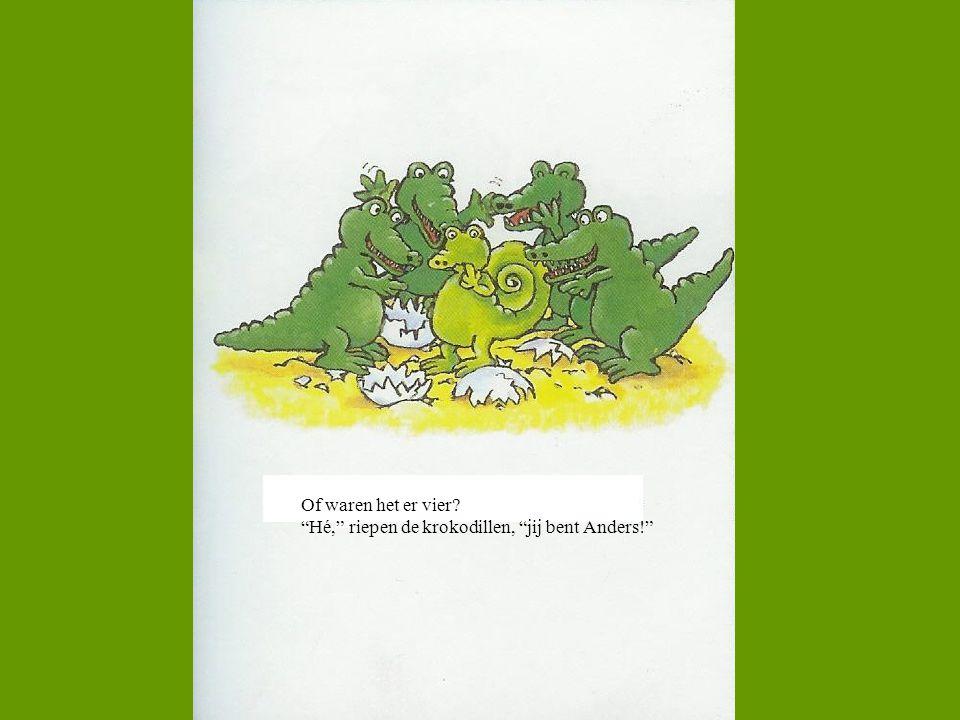 Of waren het er vier Hé, riepen de krokodillen, jij bent Anders!