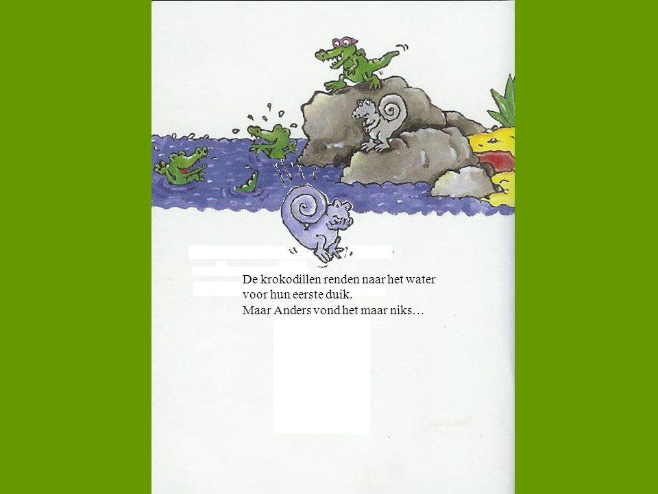 De krokodillen renden naar het water