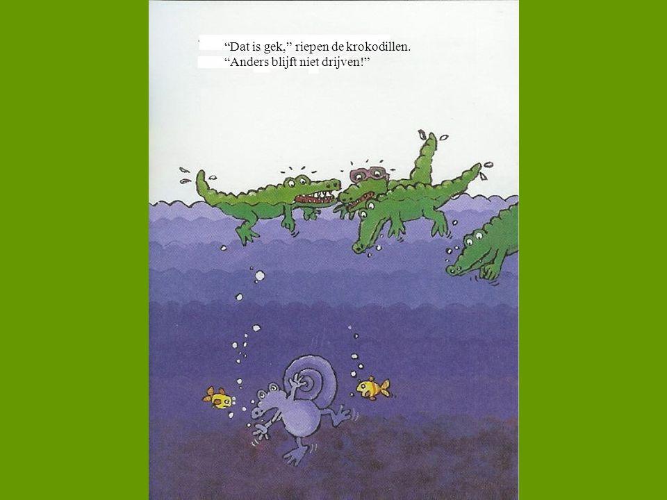 Dat is gek, riepen de krokodillen.