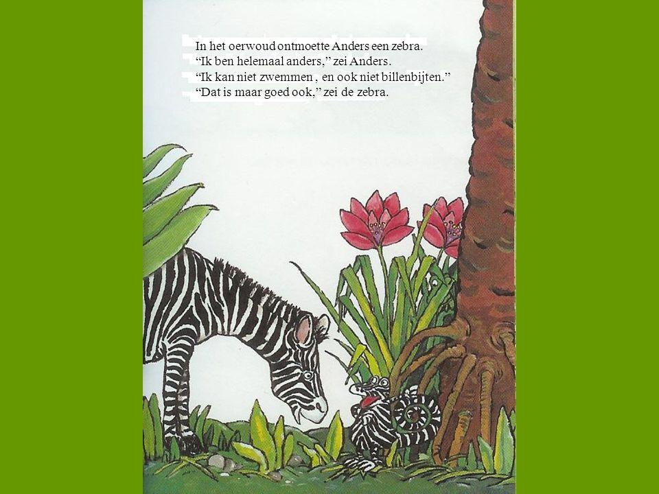 In het oerwoud ontmoette Anders een zebra.