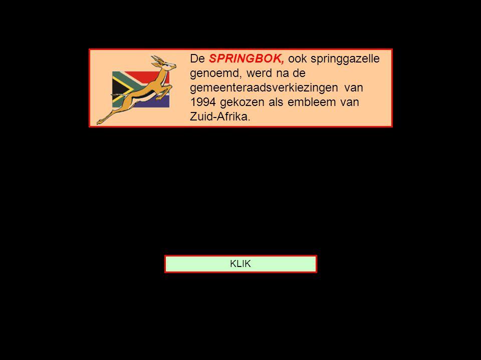 De SPRINGBOK, ook springgazelle genoemd, werd na de gemeenteraadsverkiezingen van 1994 gekozen als embleem van Zuid-Afrika.