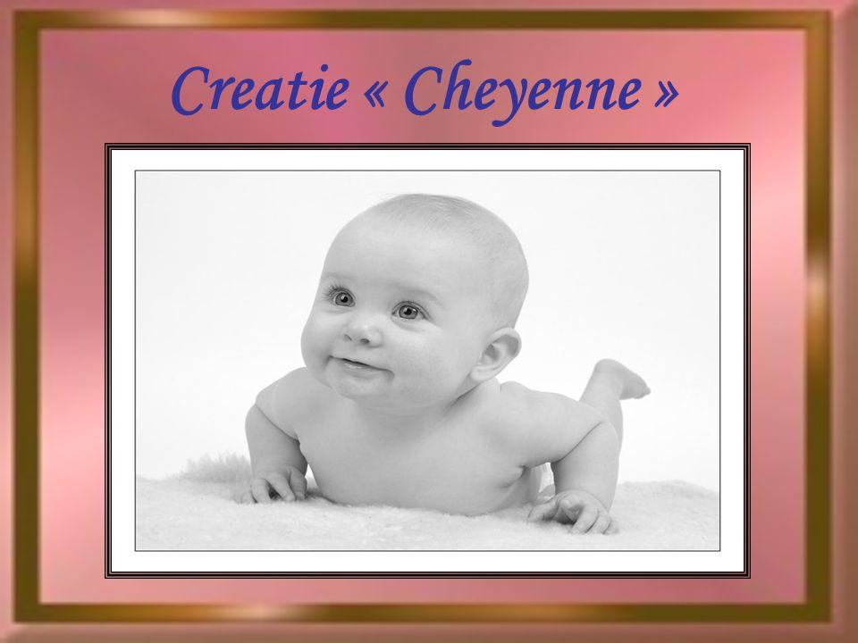 Creatie « Cheyenne »
