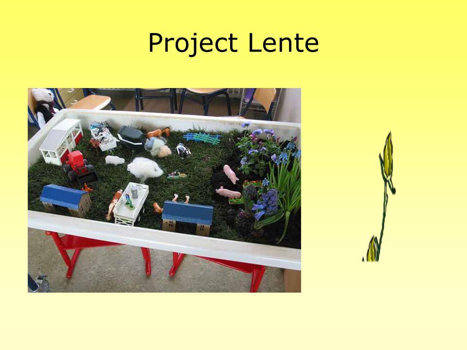 Project Lente