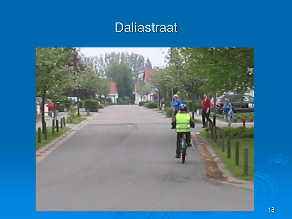 Daliastraat