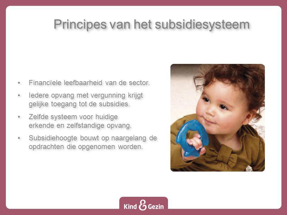 Principes van het subsidiesysteem