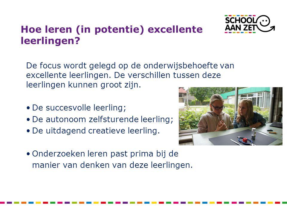 Hoe leren (in potentie) excellente leerlingen