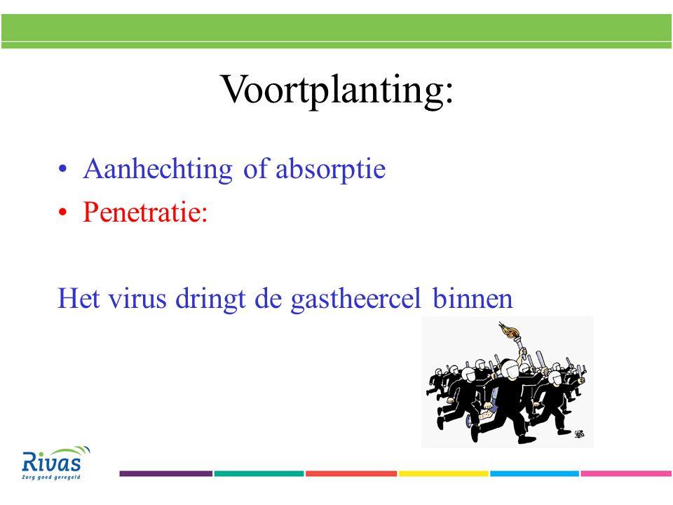 Voortplanting: Aanhechting of absorptie Penetratie:
