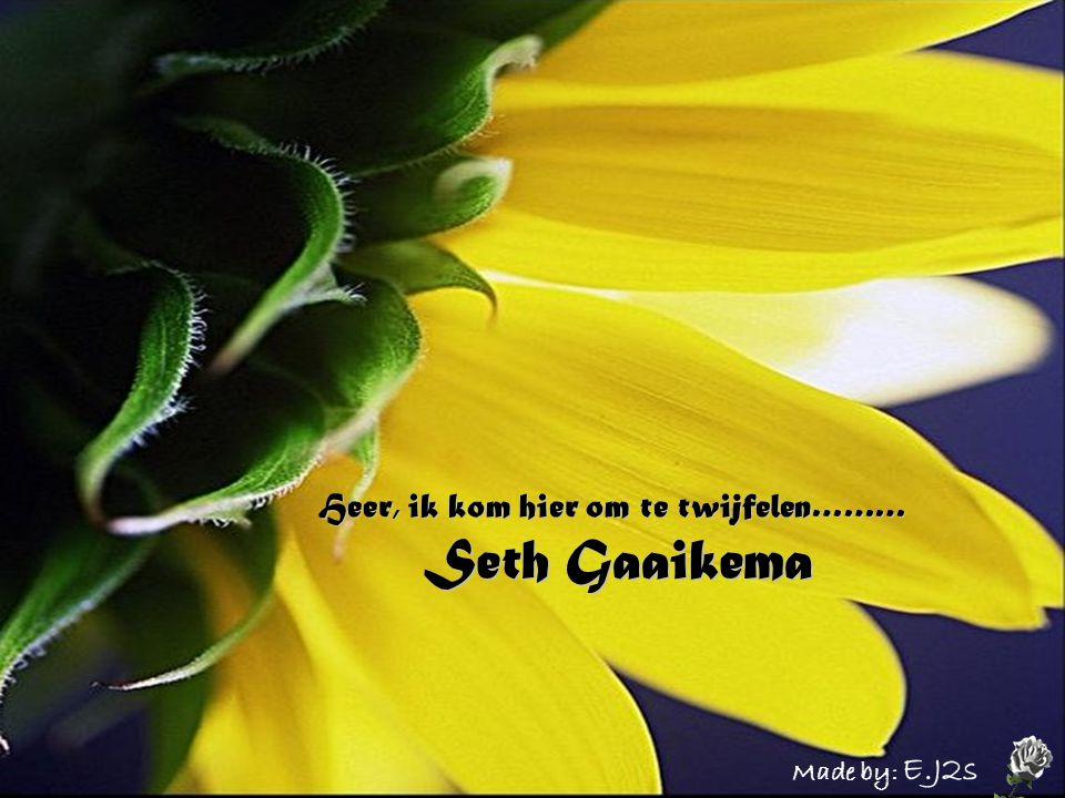 Heer, ik kom hier om te twijfelen……… Seth Gaaikema