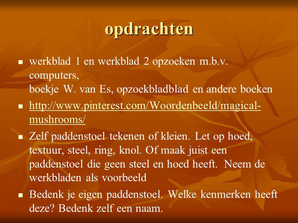 opdrachten werkblad 1 en werkblad 2 opzoeken m.b.v. computers, boekje W. van Es, opzoekbladblad en andere boeken.