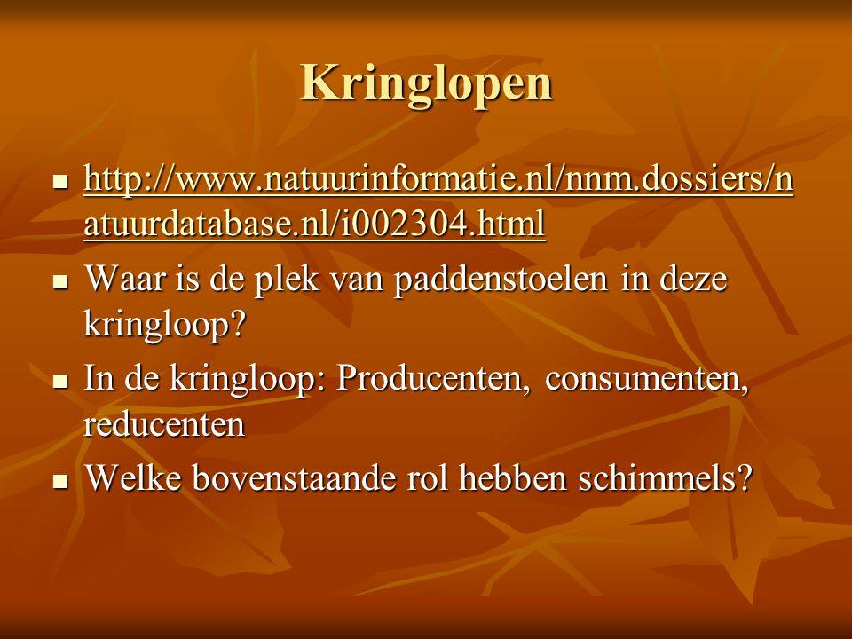Kringlopen http://www.natuurinformatie.nl/nnm.dossiers/natuurdatabase.nl/i002304.html. Waar is de plek van paddenstoelen in deze kringloop