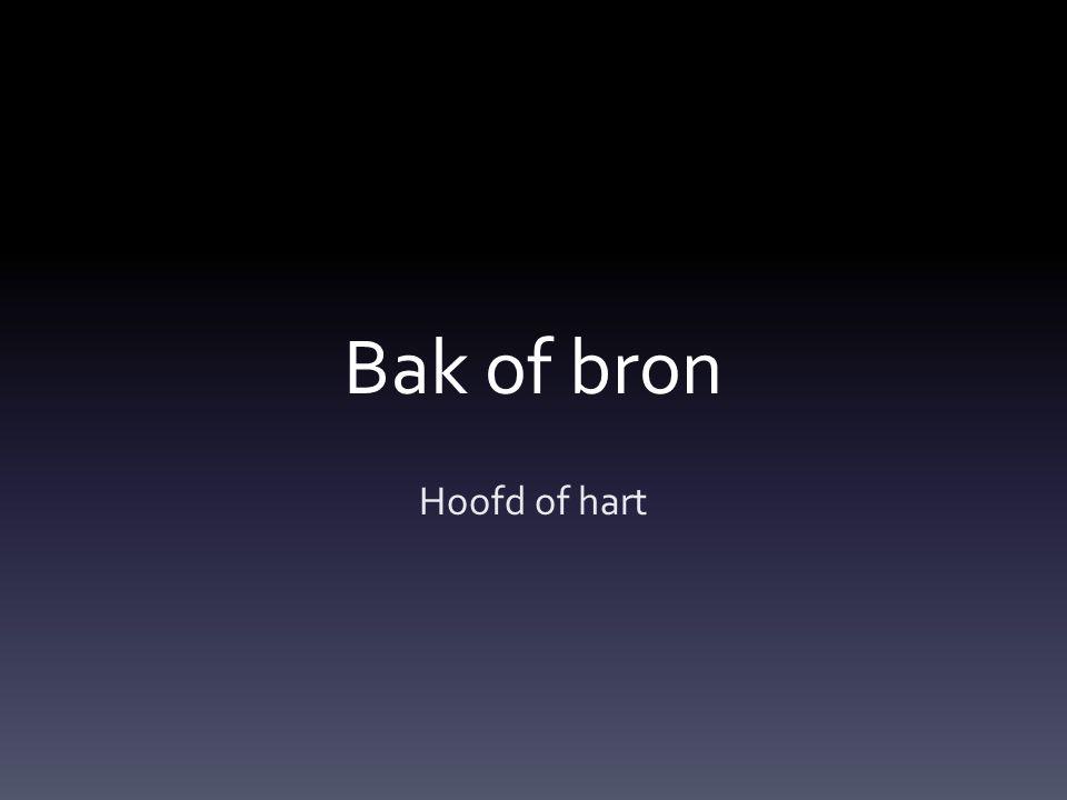 Bak of bron Hoofd of hart