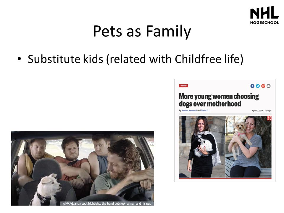 Pets as Family Substitute kids (related with Childfree life)