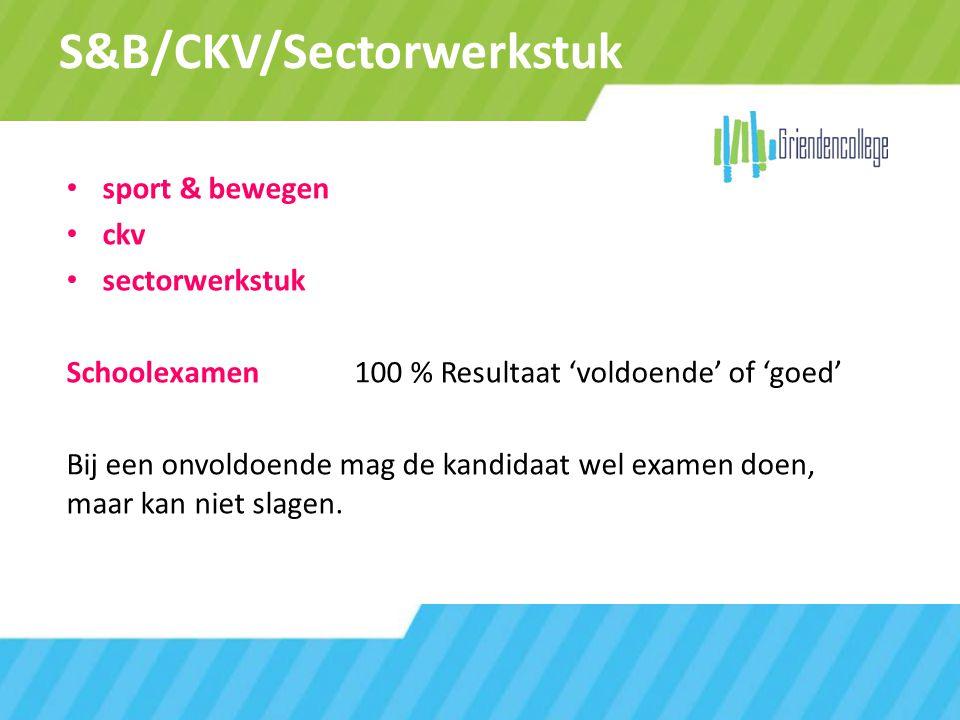 S&B/CKV/Sectorwerkstuk