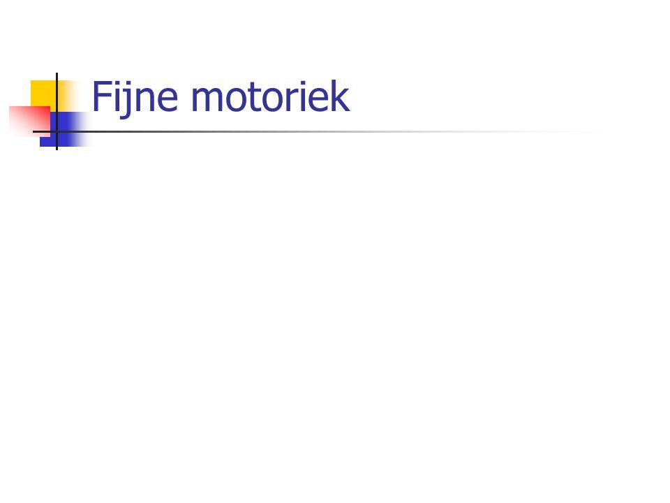 Fijne motoriek