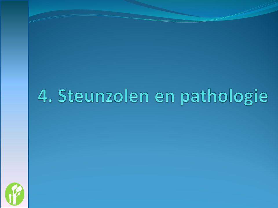 4. Steunzolen en pathologie
