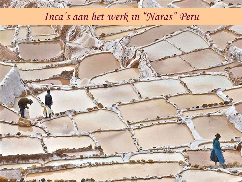 Inca's aan het werk in Naras Peru