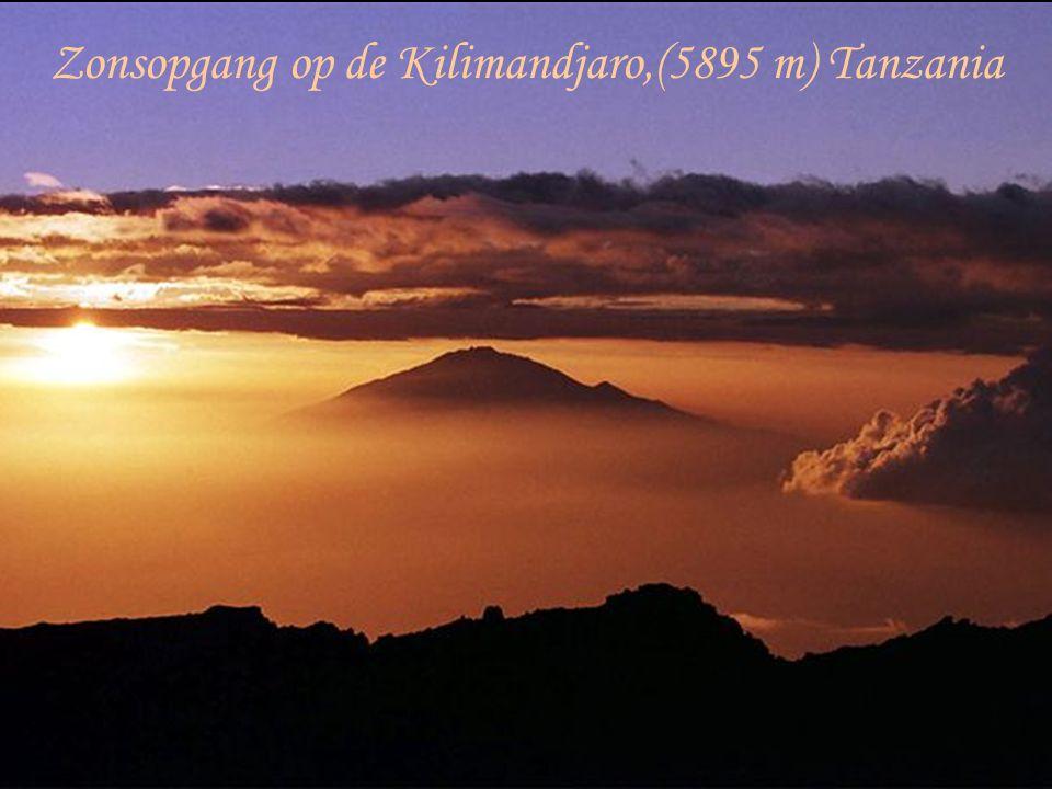 Zonsopgang op de Kilimandjaro,(5895 m) Tanzania