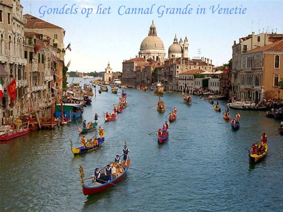Gondels op het Cannal Grande in Venetie