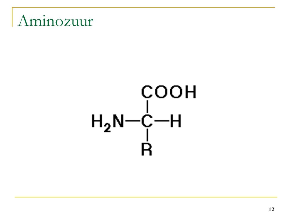 Aminozuur